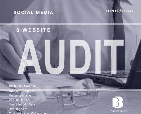 audit clinica